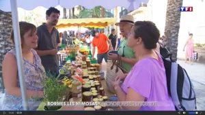Reportage sur TF1 : «Reconstruire après les cendres»