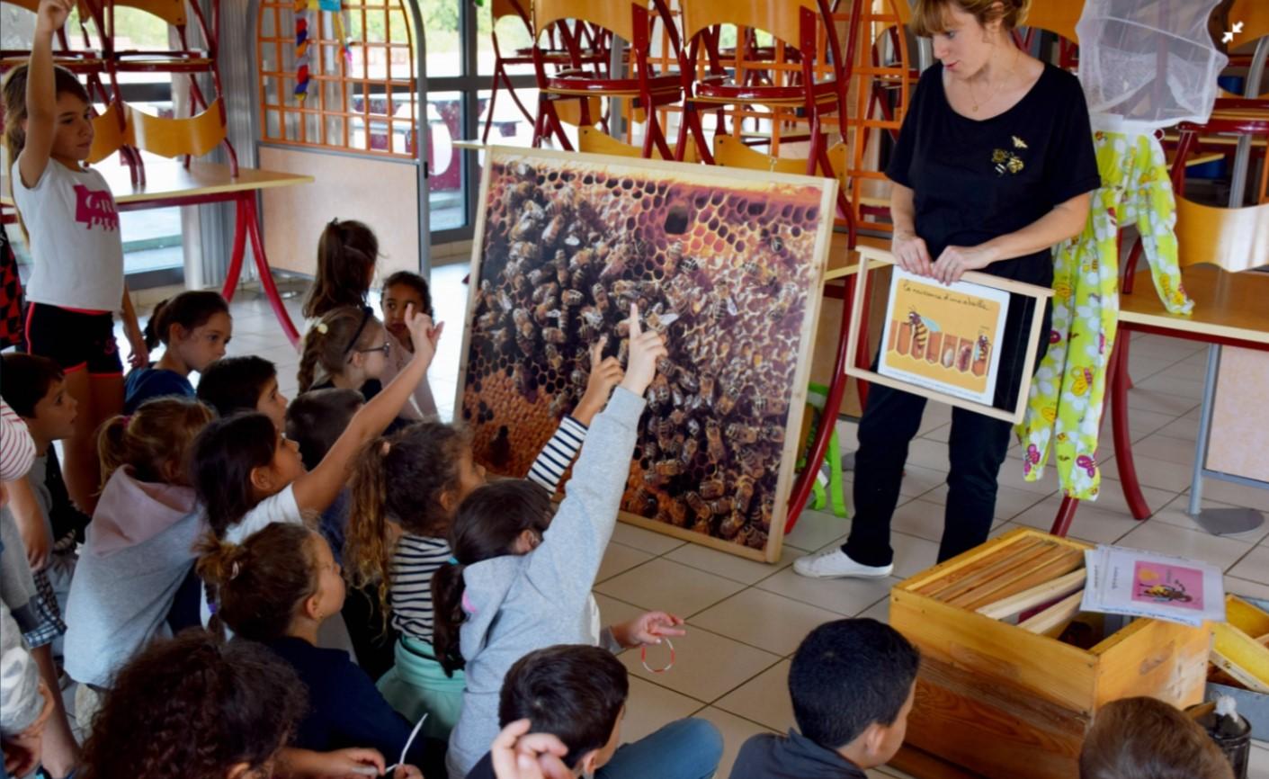 Découverte des abeilles à l'Ecole de Bormes les Mimosas